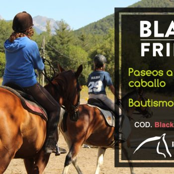 black friday pirineo ecuestre