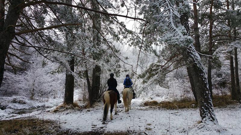 ruta a caballo por el pirineo en invierno