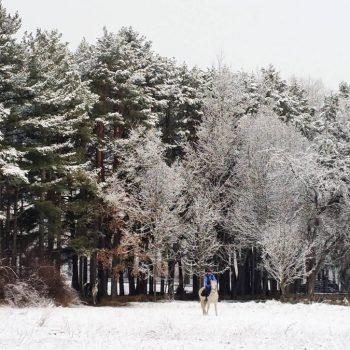 ruta invierno pirineos a caballo