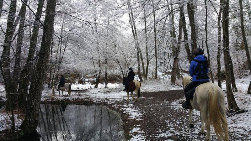 rutas a caballo turismo en invierno pirineos