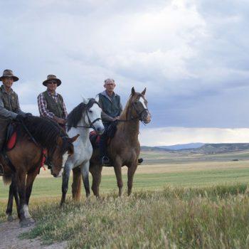 ruta por el desierto de las bardenas a caballo