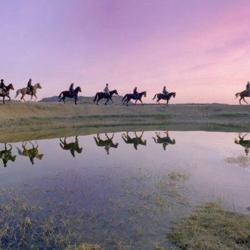 desierto de las bardenas a caballo