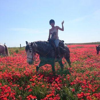 ruta a caballo por el desierto de las bardenas