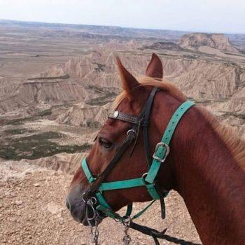 rutas a caballo por navarra