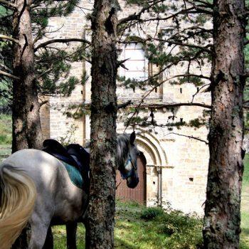ruta camino de santiago caballos