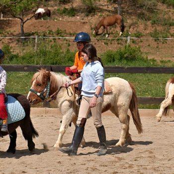 paseo en caballos para niños
