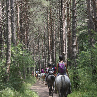 rutas a caballo pirineo ecuestre