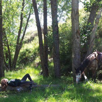 rutas a caballo en el alto aragon