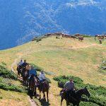 ruta a caballo en los pirineos