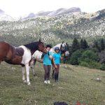 ruta turismo ecuestre pirineos