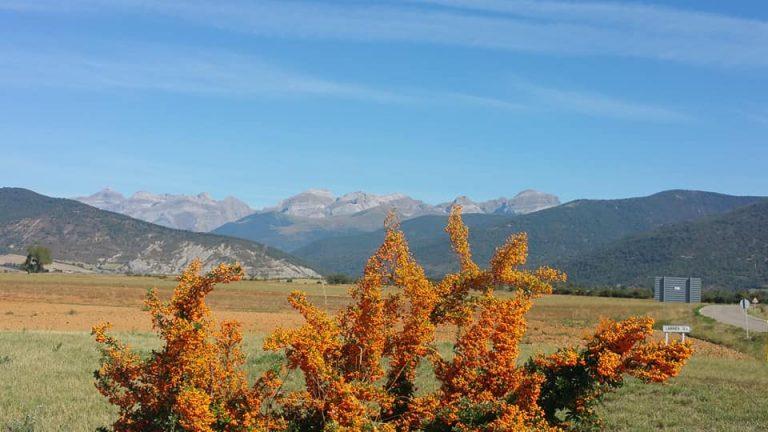 otoño en jaca