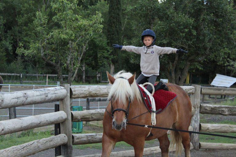 clases de equitacion caballos jaca