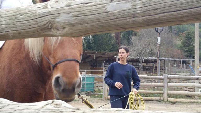 actividades-con-caballos-en-el-pirineo
