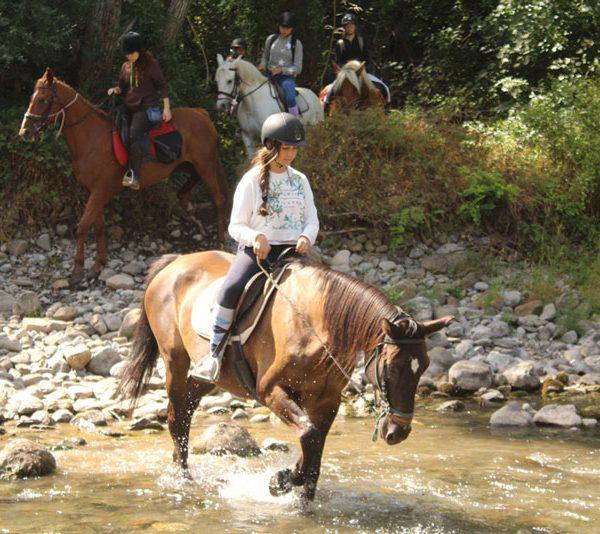 campamentos de equitacion navidades