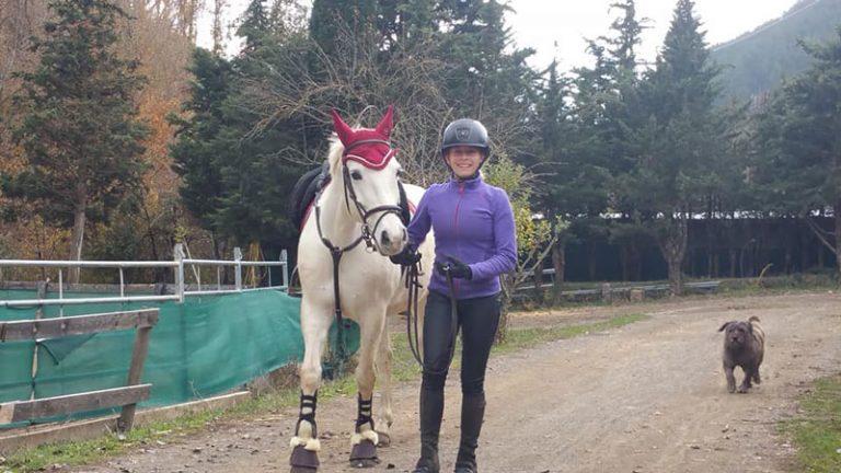 fin-de-semana-en-jaca-que-hacer-caballos