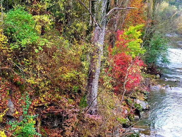otoño en jaca pirineo