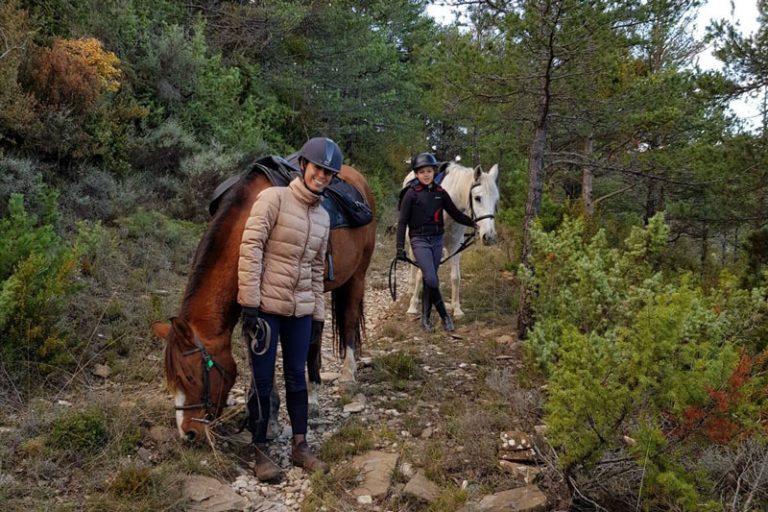 caballos pirineo jaca