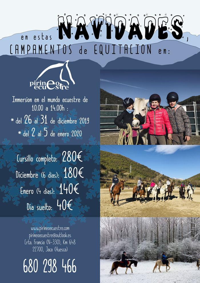 campamento equitacion navidad